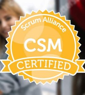 Certified ScrumMaster (CSM) Virtual-Online starting 29th April 2020